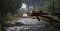 পশ্চিমবঙ্গে তাণ্ডব চালিয়ে বুলবুল এখন সাতক্ষীরায়