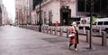 যুক্তরাষ্ট্রজুড়ে লকডাউনের প্রয়োজন দেখছেন না ট্রাম্প